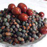 خرید پسته کوهی سبز با قیمت ارزان برای صادرات